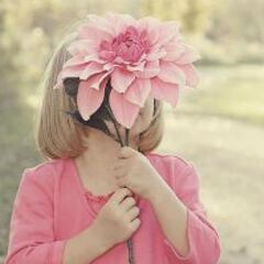 一朵娇艳花