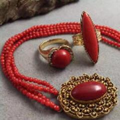 红珊瑚藏者