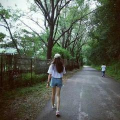 蝶恋花16