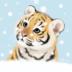 雪地里的猫