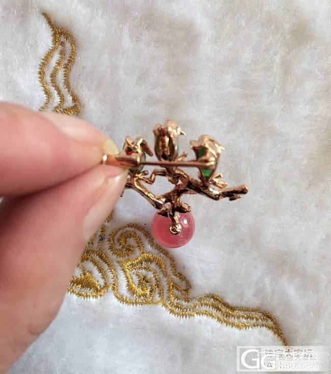 刚入的珊瑚吊坠和彩宝二用胸针_宝石