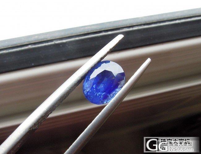 有烧的矢车菊也可以很美_蓝宝石