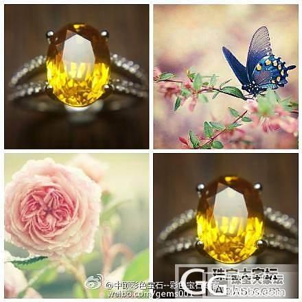 """""""爱上一个天使的缺点 用一..._中颐彩色宝石"""