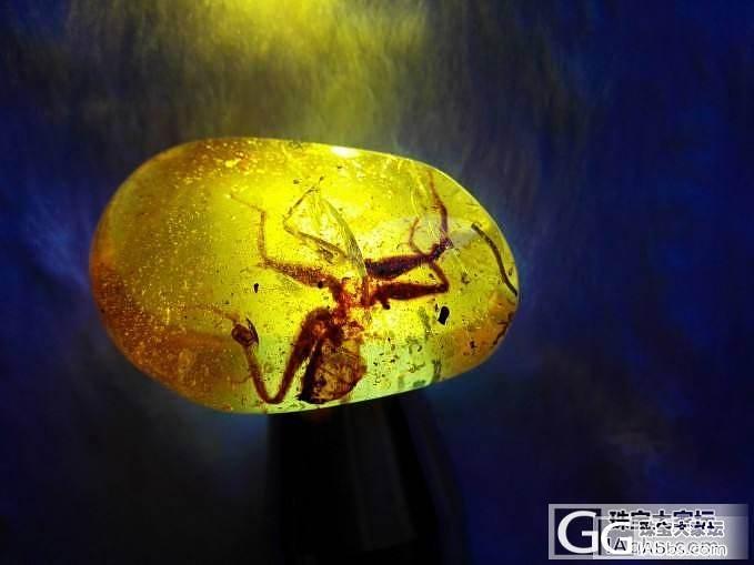 一个15克的大虫18176352162_有机宝石