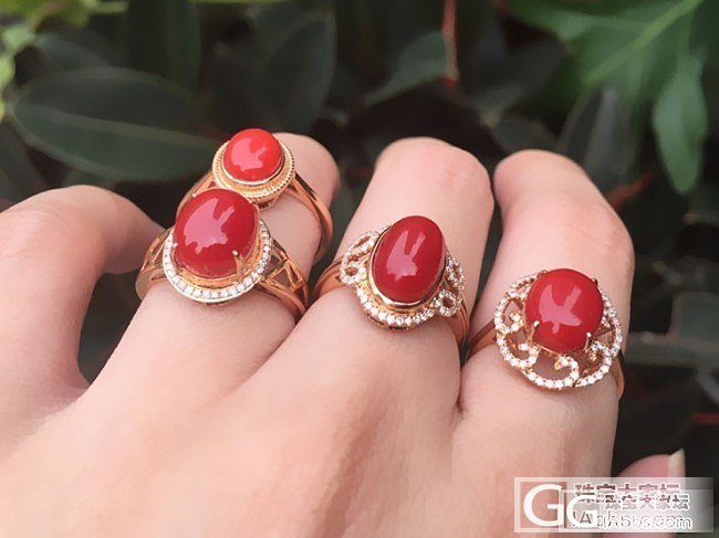 【5.8特价成品秒杀1299-3799元】18K金钻石镶嵌日本活体深海阿卡SH戒指_泰勒珠宝