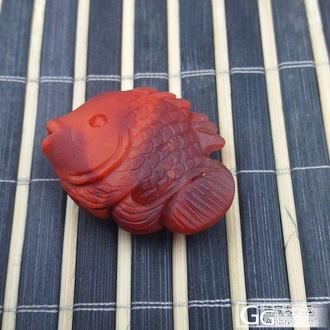 今天捕获南红玛瑙 17克的 鱼一条_南红