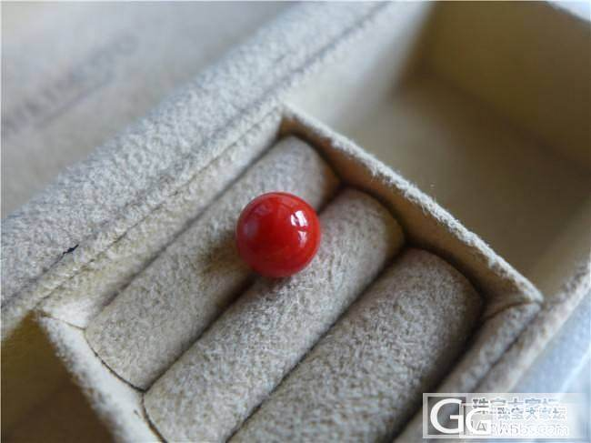三千世界---瑕疵特惠 特红momo圆珠 7mm_三千世界