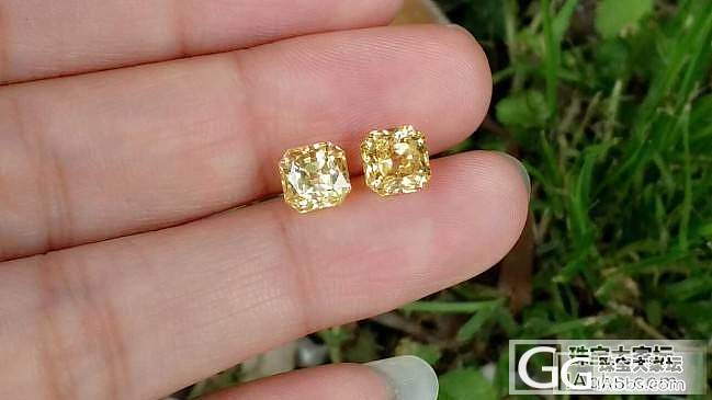 【蓝宝石】2.08+2.16无烧黄色蓝宝石,美爆的一对,EGL证书_上海皇家蓝彩宝