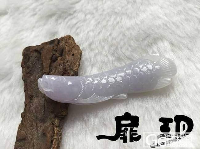 【无艳·扉玥】7.6.紫罗兰金龙鱼_翡翠