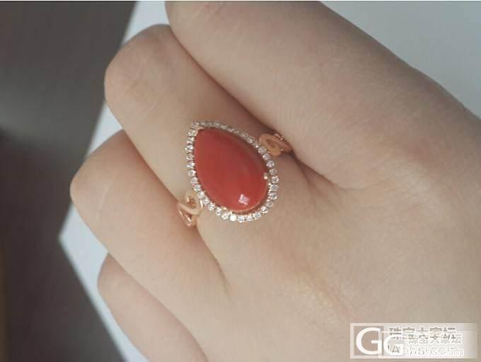 我的第一个SH戒指,求闪闪_珊瑚