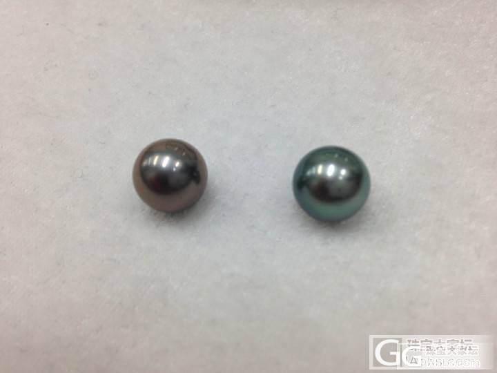10-11  11-12黑珍珠_珍珠