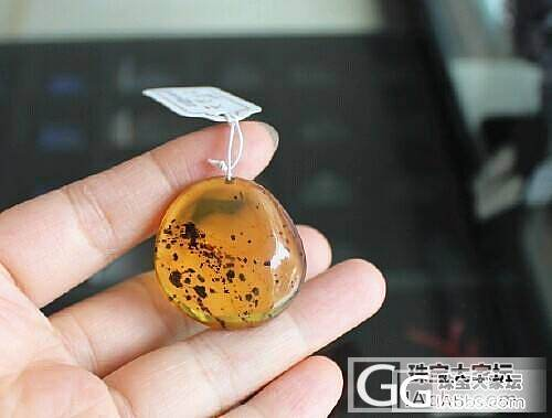 【收藏级别】0708缅甸天然琥珀 净水料金珀挂件6.26克 送证书_有机宝石