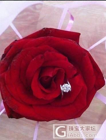 钻石和玫瑰_钻石