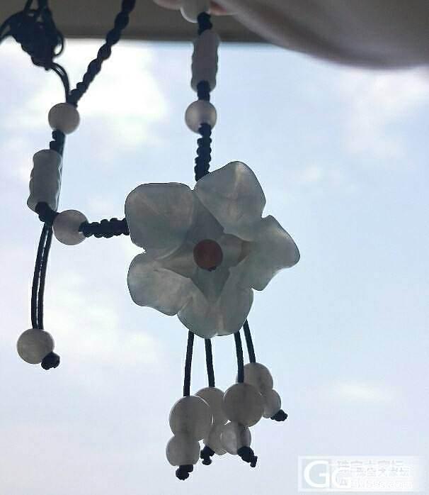 这朵花虽然不大,但总感觉很美,多拍了些照片,望大家指教。_翡翠