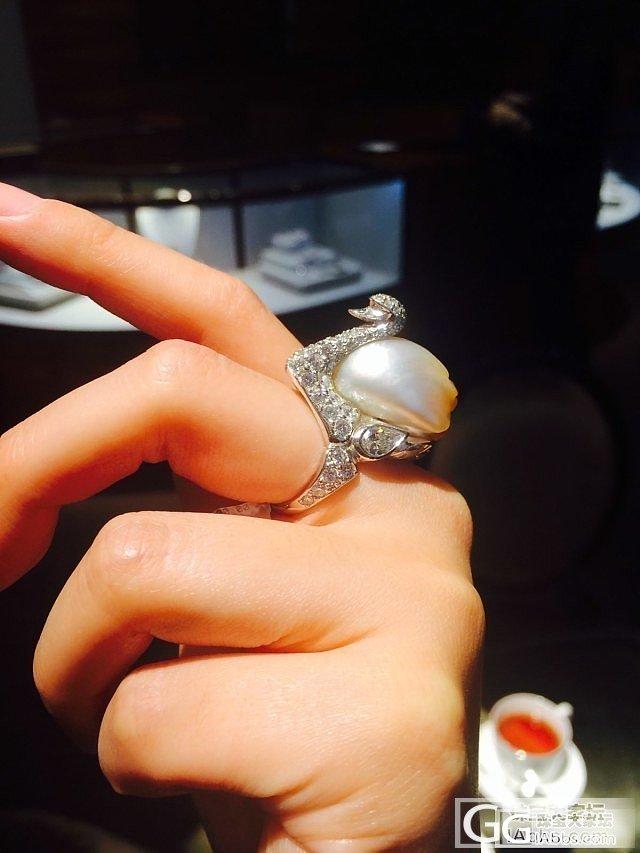 在澳洲悉尼,昨天逛街路过珠宝店看了看南洋珠_珍珠