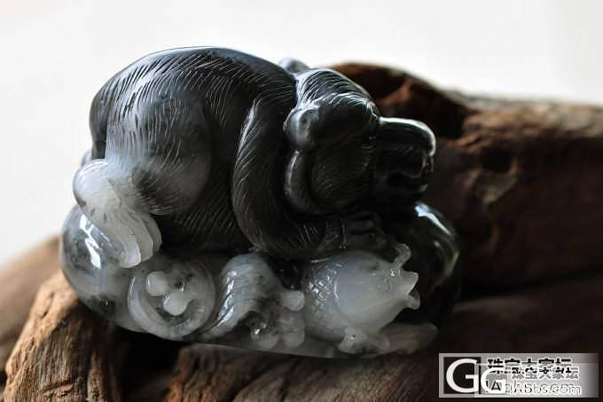 『『鱼熊兼得』』黑白分明的青花分享一下_和田玉