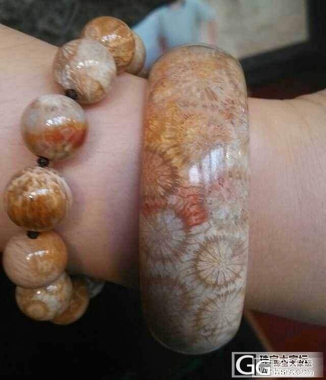 珊瑚的鼻祖--珊瑚玉_珠宝
