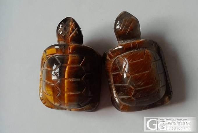 两只小乌龟,相亲又相爱_虎眼石
