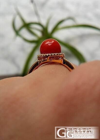 刚做好的珊瑚戒指,我是如此宠爱我的无..._珊瑚