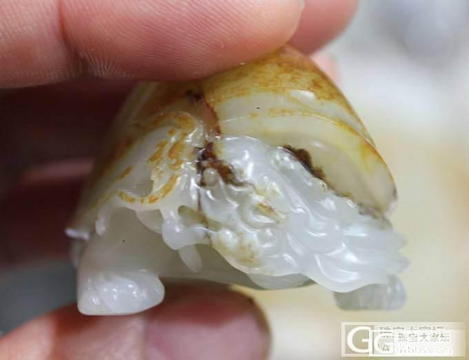 和田白玉【玉友园】93.4克小龙龟_珠宝