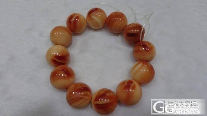 血砗磲手串17.5-18的_砗磲珠串