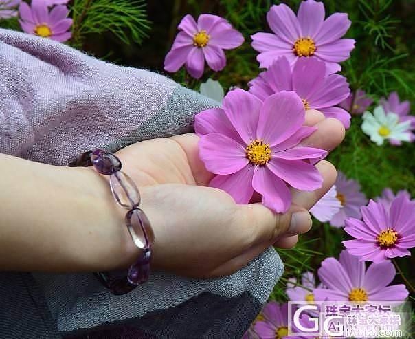 专营 天然收藏级 精品紫黄晶   懂..._宝石