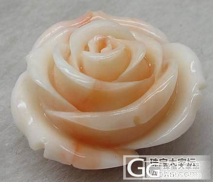 新人首贴~请大家进来帮忙选下玫瑰造型的珊瑚吊坠~~_珊瑚