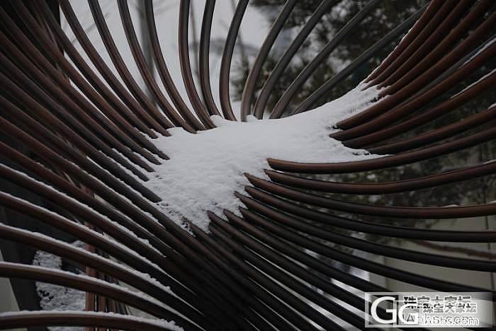 雪后鸟巢_摄影