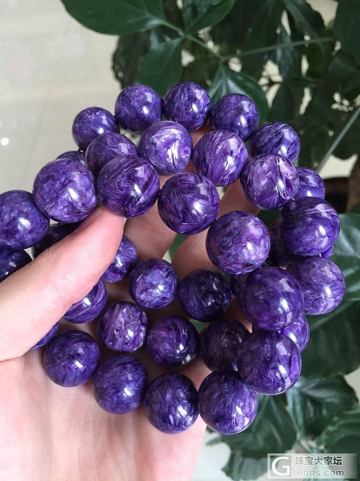 紫龙晶——彬辉_紫龙晶