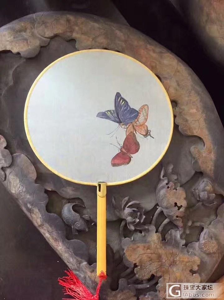 小品团扇,原本空白扇面,在画师的丹青妙笔下,美色尽显_扇