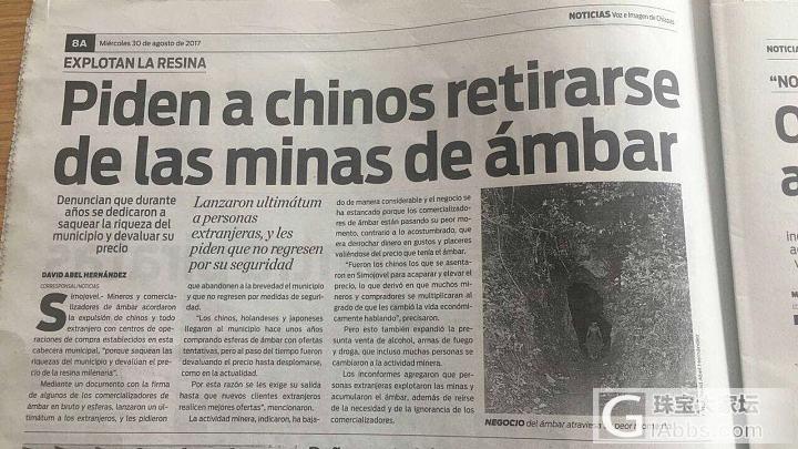 琥珀行业最新消息!墨西哥蓝珀即将迎来新一轮涨价潮!!_墨西哥矿区蓝珀