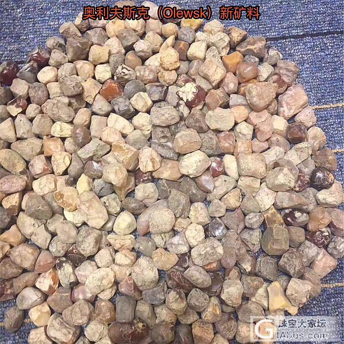 乌克兰琥珀的几个矿区_矿区琥珀蜜蜡