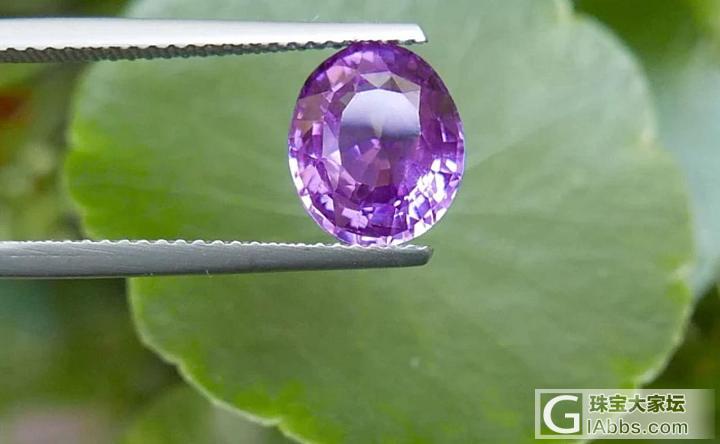 请行家看看哪个好选-紫色蓝宝石_刻面宝石蓝宝石