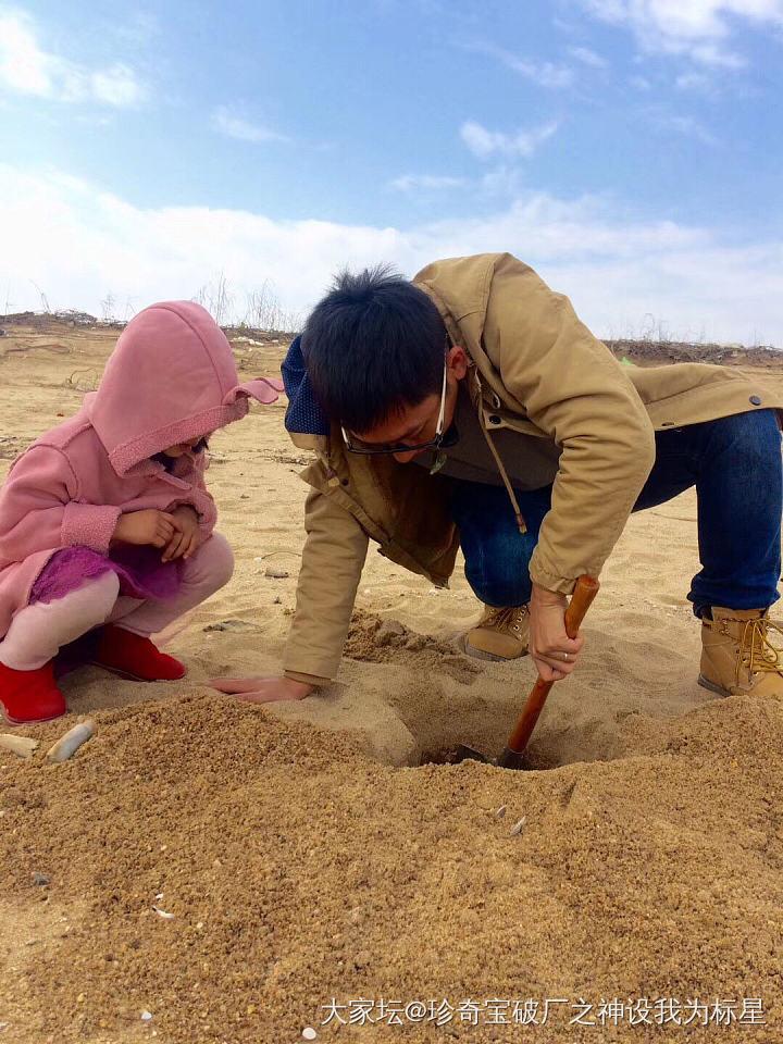 从沙子里挖出来的小螃蟹叫什么_宠物