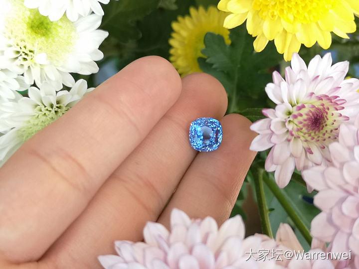 鲜花与蓝宝石_蓝宝石刻面宝石
