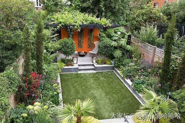 中国丈母娘出国探亲 把女儿家别墅花园爆改成菜地! 洋图片