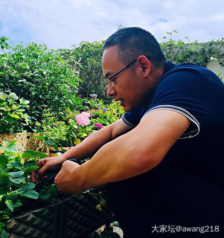 勤劳的人儿说,干活就是我的爱好。 有长工如此,地主复何求啊。😃_菜园
