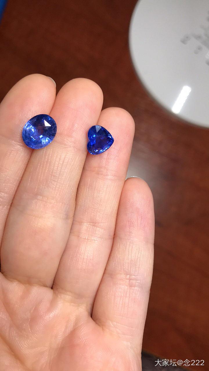 都是矢車菊,求問大家_藍寶石