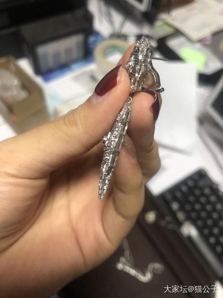 在淘宝一商家布契拉提工艺定制的耳环看着图片我想哭😢_镶嵌