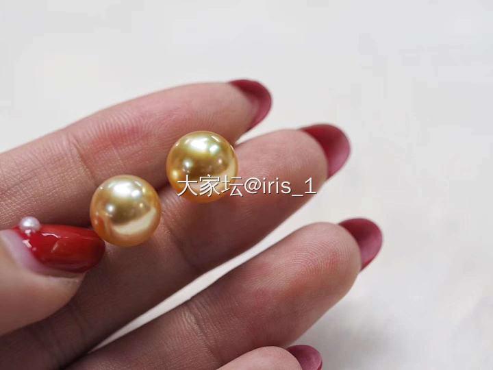 18k金11mm左右南洋金珠耳钉浓金皮细腻_有机宝石