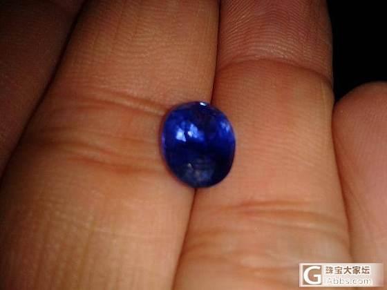 用破手机拍了两张矢车菊的照片_蓝宝石