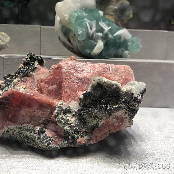 地质博物馆_博物馆矿物标本