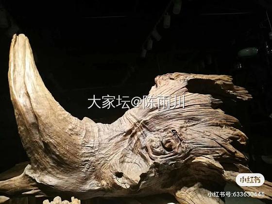 自然风化金丝楠木犀牛头
