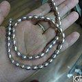 淘来随便带的珍珠项链,就当抹珍珠粉好了