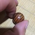 哪位大侠帮忙看看这是什么材质的珠子吗