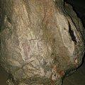 41斤海南树化玉