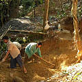 珠宝界的新宠-记缅甸琥珀的前世今生