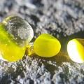 裸石原石,是金绿吗?请行家鉴定!
