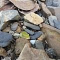 裸石,是金绿宝石吗?还是黄蓝宝石?请行家鉴定