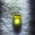 来颗6.8ct黃色蓝宝石